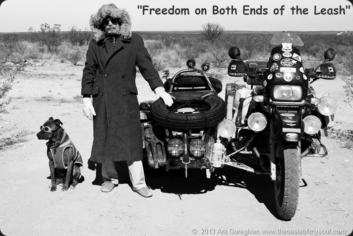 Freedom on Both Ends of the Leash xxx