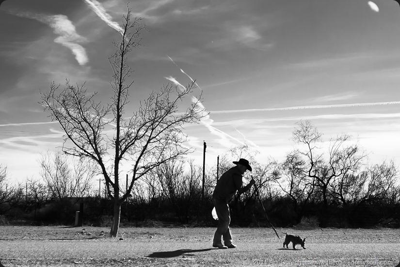 A Man and his Dog AL