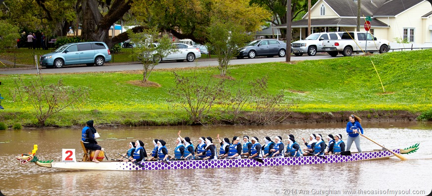 Dragon Canoe races in New Iberia, Louisiana-36 xxx