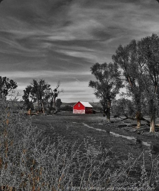 B W red barn xxx