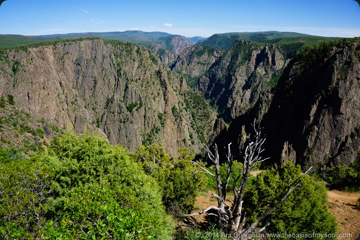 Black Canyon of Gunnison xxx