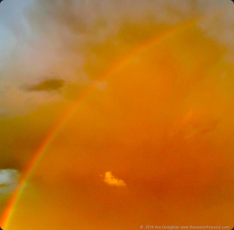 Rainbow xxx
