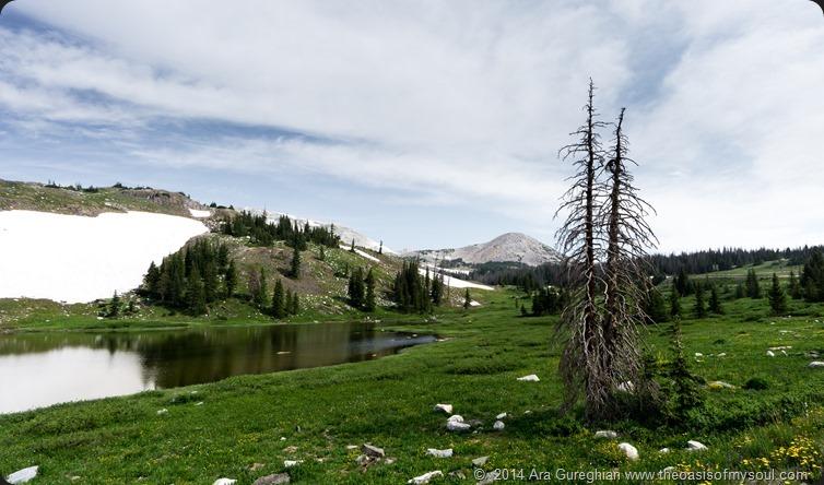 Snowy Range Pass-15 xxx