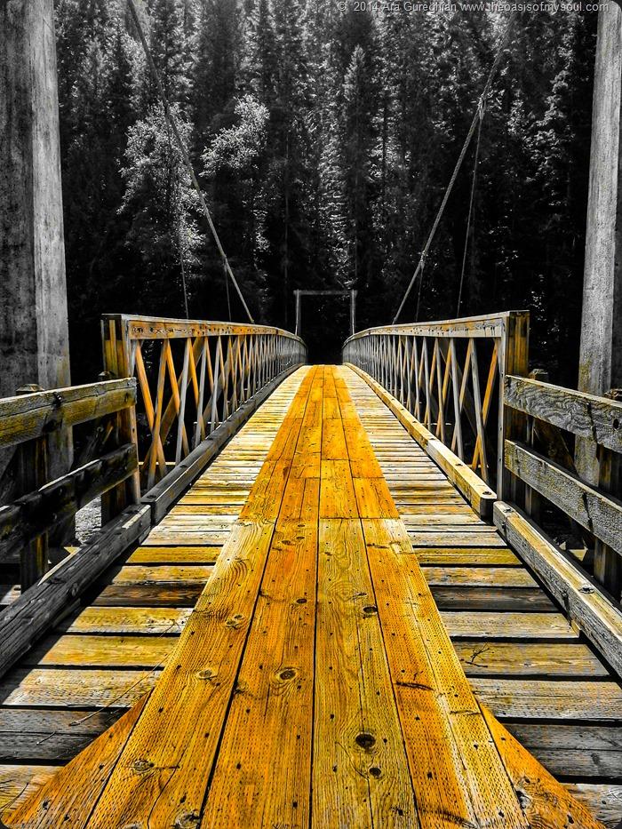 Suspended Bridge xxx