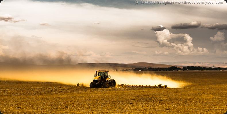 Working the land-3 xxx