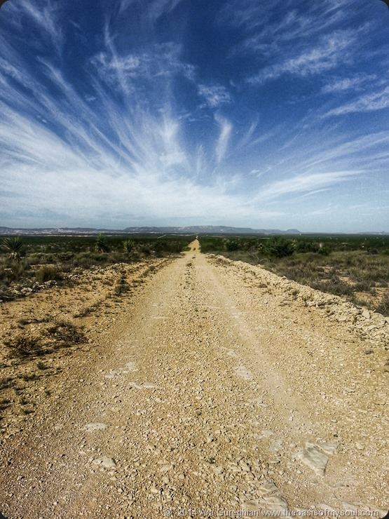 The road to The Oasis xxx