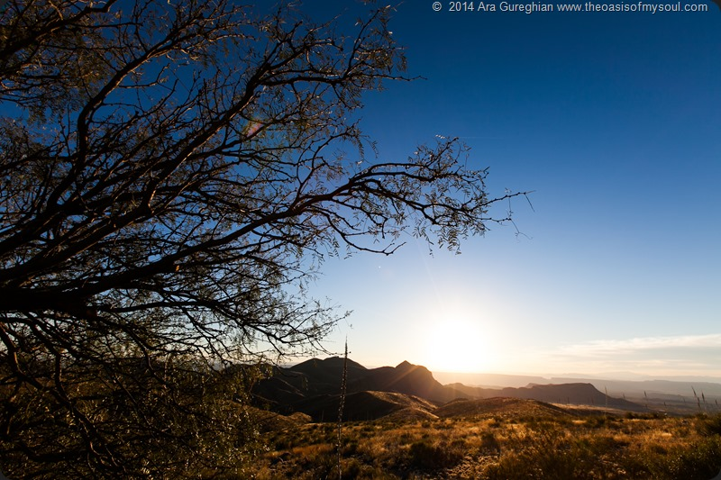 Big Bend National Park xxx