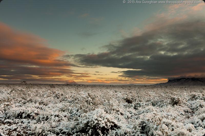 Snowy Desert-2 xxx
