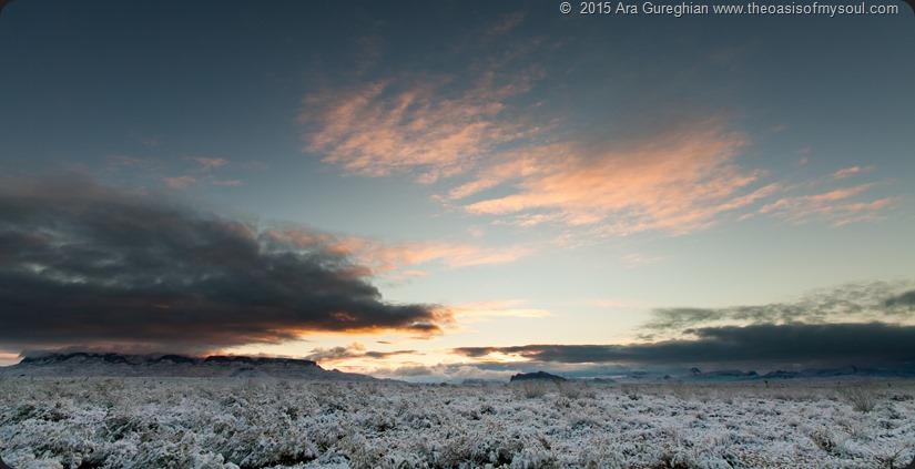 Snowy Desert xxx
