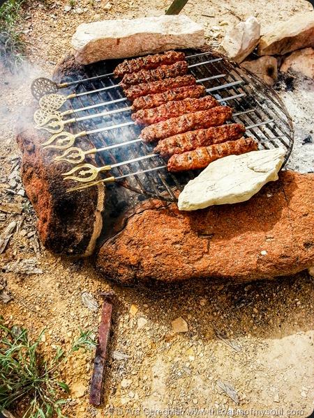 Lamb Kebabs xxx