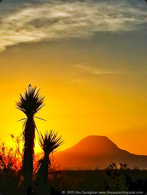 Sunrise oon Hwy 118 xxx