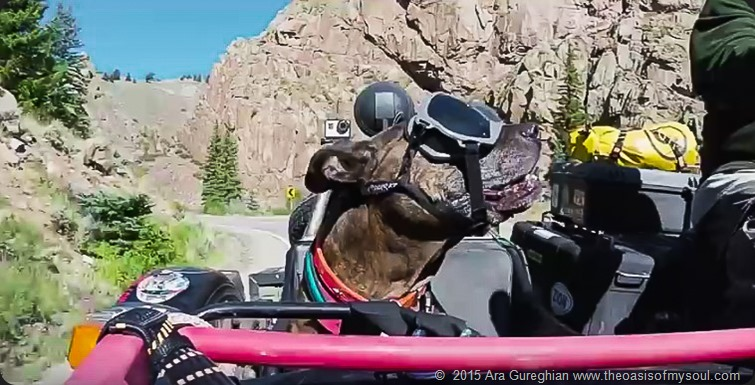 Colorado riding-9 x
