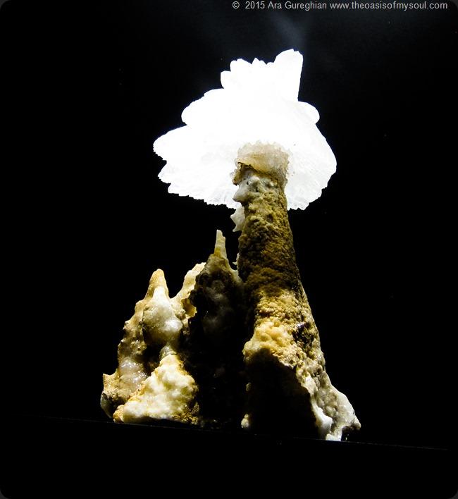 Mineral Treasures-19 x