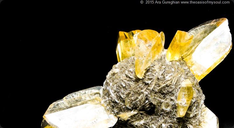 Mineral Treasures-24 x