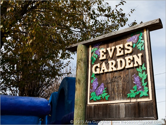 Eve's Garden, Bed and Breakfast, Marathon, Texas x