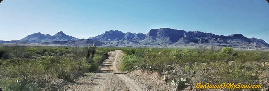 In Big Bend, one more time... TX-8 xxx