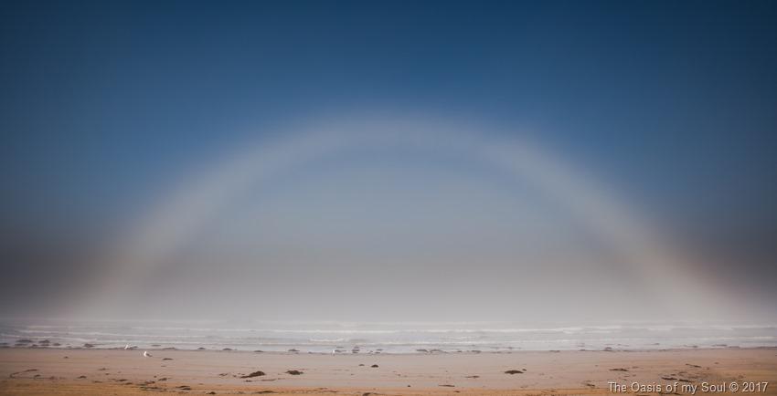 White Rainbow xxx PCTB