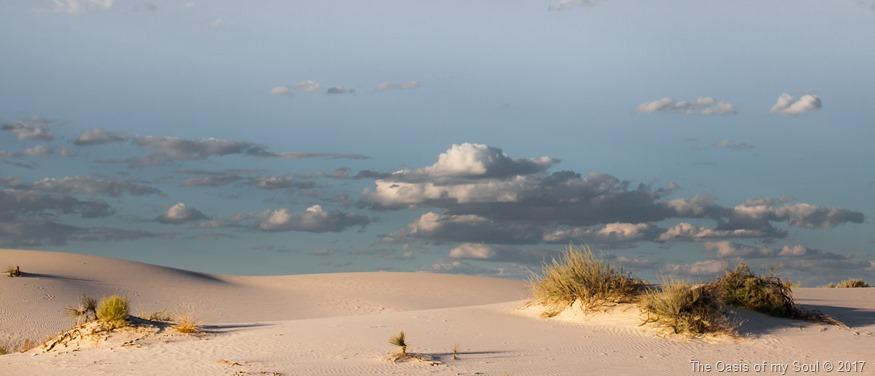 White Sand Dunes, NM-11 xxx