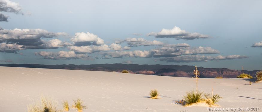 White Sand Dunes, NM-12 xxx