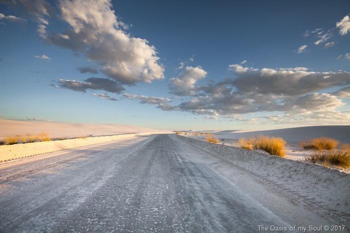 White Sand Dunes, NM-4 xxx