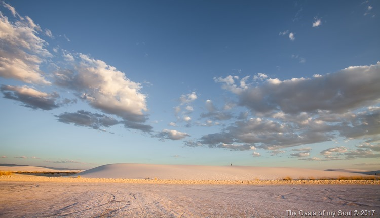 White Sand Dunes, NM-7 xxx
