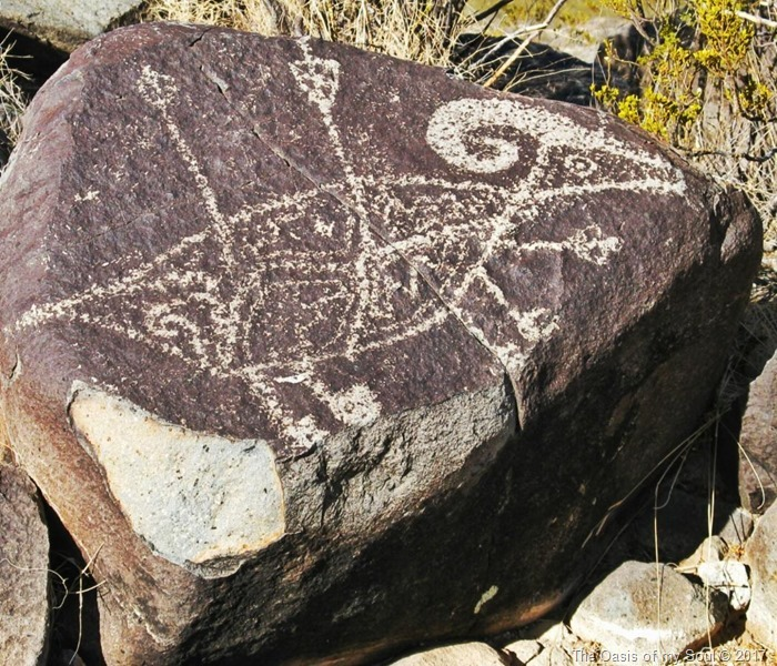 Three Rivers Petroglyphs 4